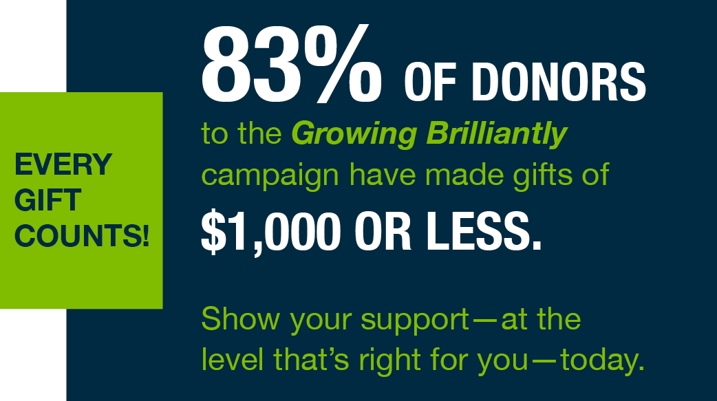 83% of donors have made donations of $1000 or less