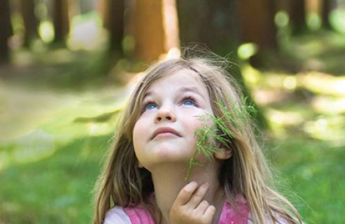 Young girl surrounded by trees looking up in awe